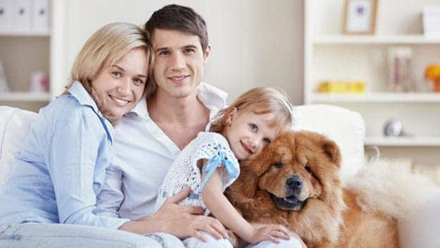 Wills & Trusts dog-young-family Direct Wills Shirley